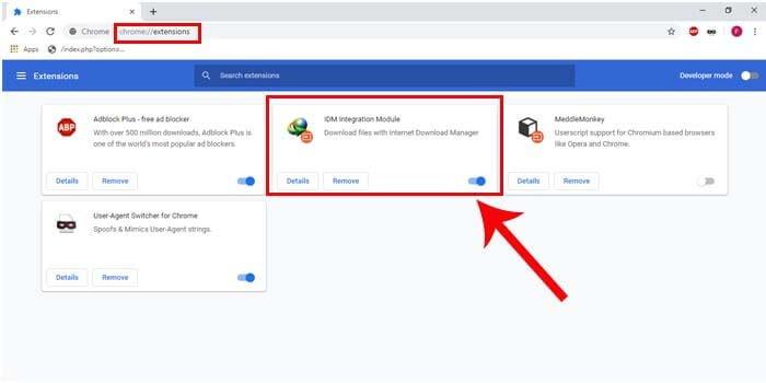Cara Mengatasi IDM Tidak Bisa Download File di Google Chrome