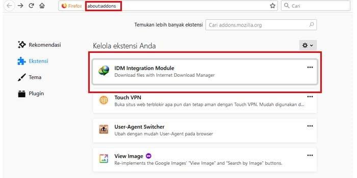 Cara Mengatasi IDM Tidak Bisa Download File di Mozilla