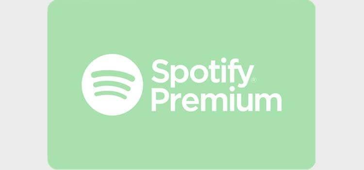 Jual akun spotify premium