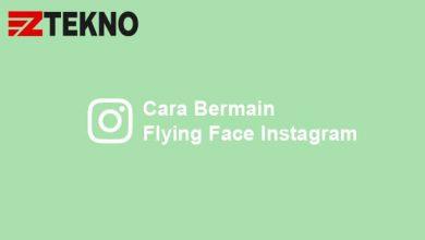 Cara Bermain Flying Face Instagram