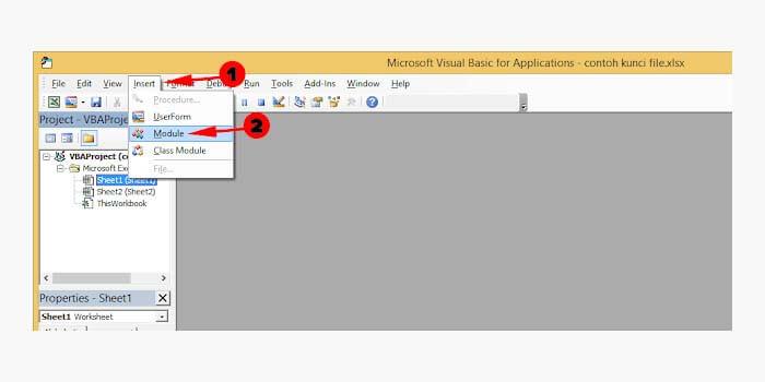Cara Membuka Excel yang proteksi password