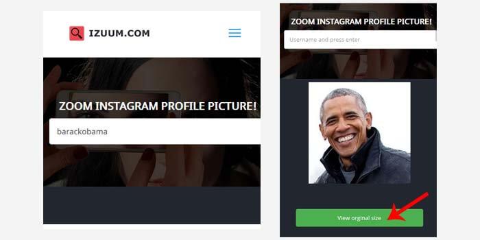 cara download foto profil ig