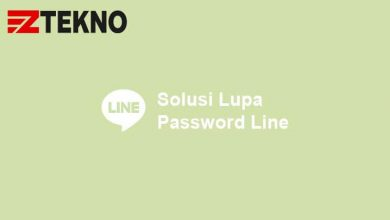 Lupa Password Line