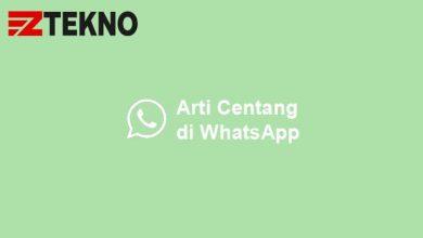 Arti Centang WhatsApp