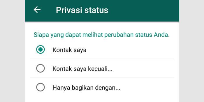 Privasi Status WhatsApp